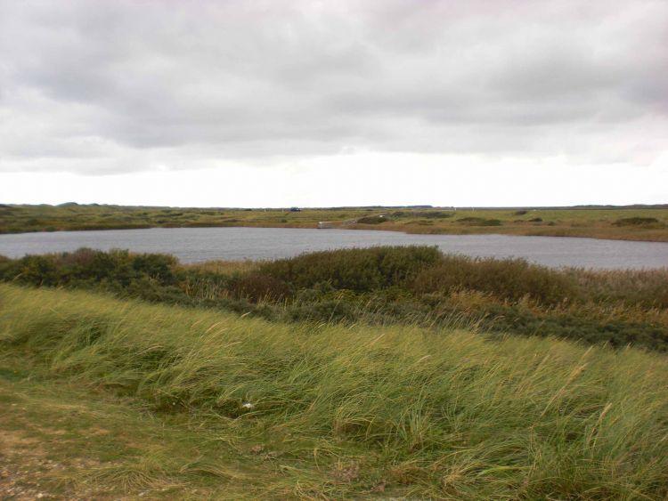 Billede af Nymindegab Ørredsø