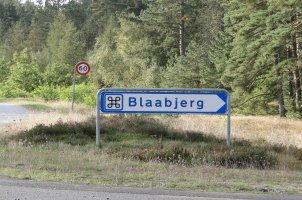 Billede af Blaabjerg Plantage