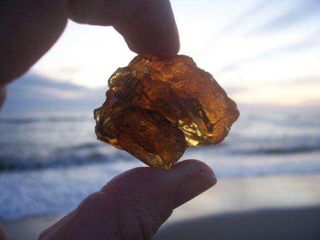 rav på stranden - Fakta om Vesterhavet