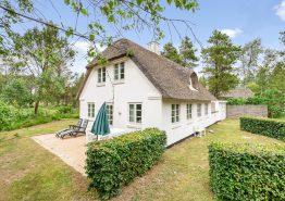 Echte Ferienhaus-Idylle direkt am Wald- und Heidestück (Bild 1)