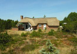 Klassisk stråtagshus med sauna på stor og ugeneret naturgrund (billede 1)