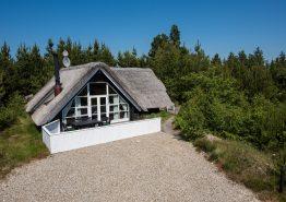 Gemütliches Reetdachhäuschen mit Sauna in Houstrup