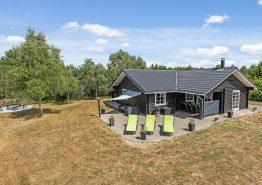 Lyst og moderne feriehus med spa og sauna (billede 1)
