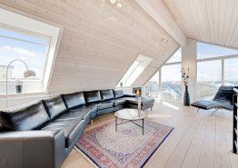 Moderne luksushus med spa, sauna og havudsigt 100m fra havet (billede 3)