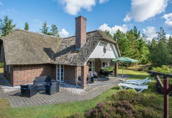 Reetdachhaus mit Sauna und Whirlpool mitten im Grünen, 1 kleiner Hund erlaubt
