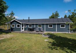Moderne feriehus med sauna, spa og trampolin i haven (billede 1)