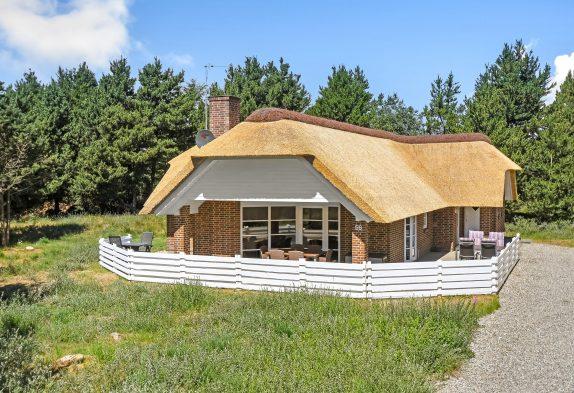 Schönes Reetdachhaus, 2 Bäder, Whirlpool, Sauna, 1 Hund