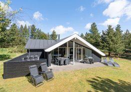 Gepflegtes Sommerhaus in Ho bei Blåvand, Sauna und Whirlpool (Bild 1)