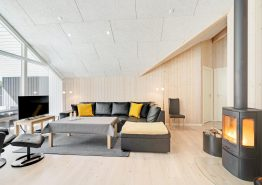 Gepflegtes Sommerhaus in Ho bei Blåvand, Sauna und Whirlpool (Bild 3)
