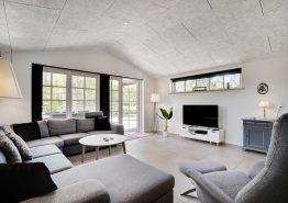 Wunderschönes Ferienhaus für 10 Personen, Whirlpool, Sauna, Spielplatz und bis zu 2 Hunde in Ho (Bild 3)