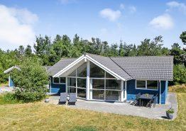 Tolles Ferienhaus mit Whirlpool und Sauna in ruhiger Umgebung (Bild 1)