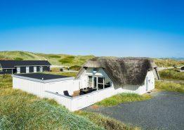 Ferienhaus mit Strohdach und Sauna, 100 m zum Strand (Bild 1)