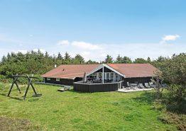 Ferienhaus mit Swimmingpool nah an Fjord und Nordsee (Bild 1)