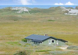Haus mit Aussicht auf die Dünenlandschaft (Bild 1)