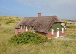 Sommerhus med stråtag på skøn naturgrund tæt ved strand