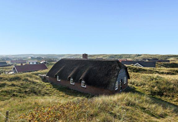 Toll gelegenes Ferienhaus mit Aussicht auf die Dünen