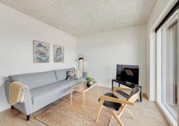 Nybygget og moderne ferielejlighed i Hvide Sande med gratis strøm (billede 3)