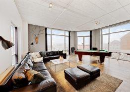 Flot lejlighed med tagterrasse og gratis strømforbrug (billede 3)