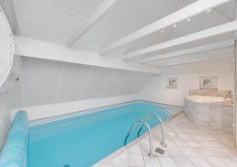 Modernes Poolhaus mit Whirlpool, Sauna, Volleyballplatz – zwei Hunde erlaubt (Bild 3)