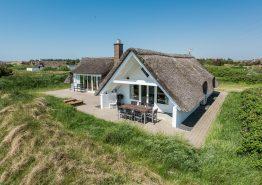 Ferienhaus mit Kamin und Reetdach auf Naturgrundstück