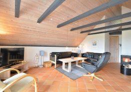 Gemütliches Ferienhaus mit schöner Terrasse und Sauna (Bild 3)
