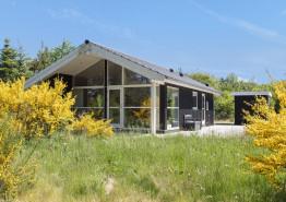 Helles freundliches Nichtraucherhaus auf ungestörtem Naturgrundstück (Bild 1)
