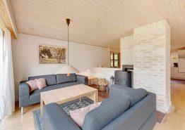 Uriges Reetdachhaus in Vester Husby mit Sauna auf grossem Grundstück (Bild 3)