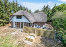 Uriges Reetdachhaus in Vester Husby mit Sauna auf grossem Grundstück