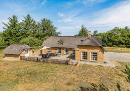 Stråtækt feriehus i Vester Husby med spa, sauna og stor have. Kat. nr.:  L6534, Lyngklitvej 2;