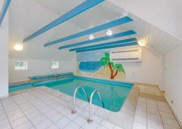 Tolles Poolhaus mit Sauna, Whirlpool und Volleyballfeld (Bild 3)