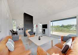 Tolles Ferienhaus mit Sauna und Innenhof (Bild 3)