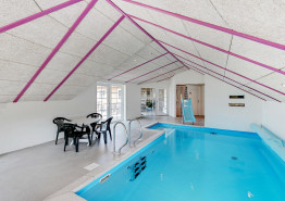 Großes Reetdachhaus mit Pool und Wellnessbereich für 12 Personen (Bild 2)