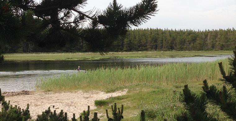 Die See Skavemose in der Husby Klitplantage