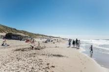 Ferienwohnung in Dänemark für 11 Personen -2