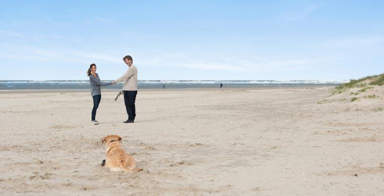 Strand & hund