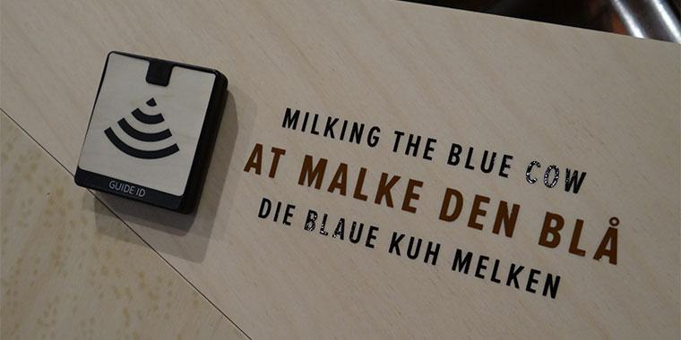 Die blaue Kuh melken