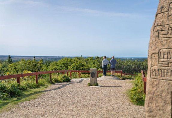 Blåbjerg Klitplantage Aussicht vom Blåbjerg und Gedenkstein