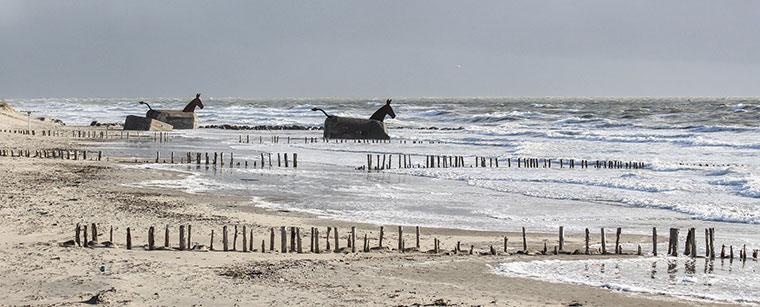 Nordseewellen im Winter an der Küste in Dänemark bei Blåvand