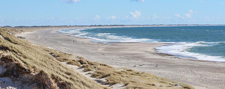 Dünen an der Westküste in Dänemark bei Bjerregård