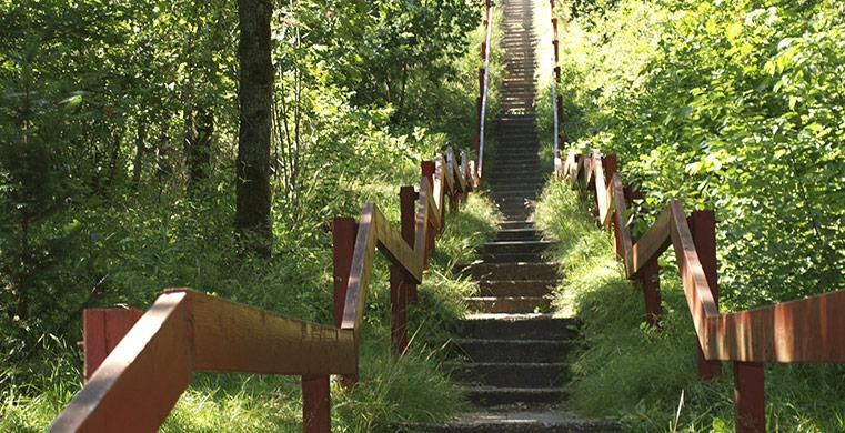 Kom tæt på de naturskønne områder med et sommerhus ved Houstrup