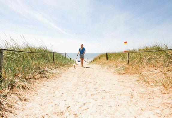 Den store strandguide