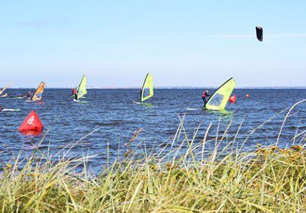 Westwind Bork Havn